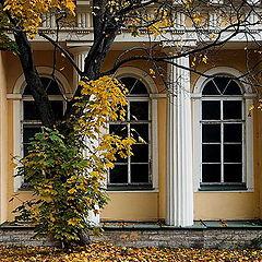 "photo ""Three Windows"""