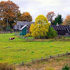 "фото ""Осенью в деревне #4"""