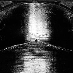 "photo ""Lone Wanderer"""