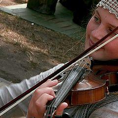 "фото ""Violin...."""