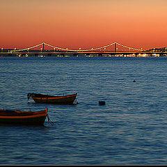 "фото ""Lisbon by night"""