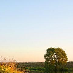 "фото ""Осенний закат"""