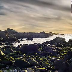 "photo ""rocks and sea"""