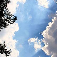 """фото """"Почти осеннее небо"""""""