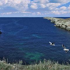 "photo ""Crimea. Cape Tarhankut. A panorama"""