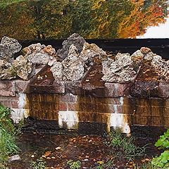 "photo ""Autumn in the Park #2"""