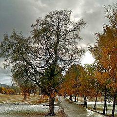 "фото ""October"""