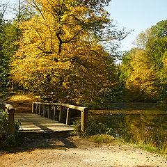 "photo ""The bridge (in autumn paints)"""