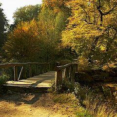 "photo ""The bridge (in autumn paints)-2"""