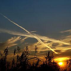 "photo ""Sky triangle"""