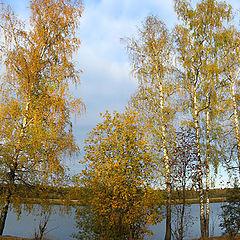 """photo """"Autumn Cheerful !!!"""""""