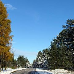 """photo """"Winter has come!"""""""