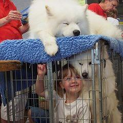 "фото ""Amy & Samoyed at the Pet Expo"""