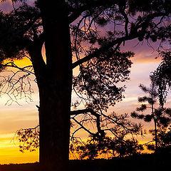 """photo """"Braslav sunsets #2"""""""