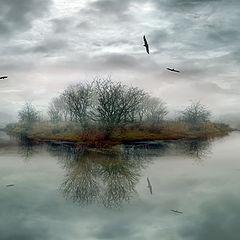 "photo ""The Island"""