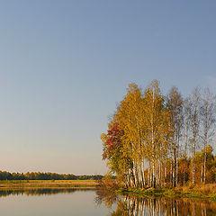 "фото ""Осенний полдень"""