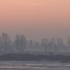 """фото """"Frosty dawn"""""""