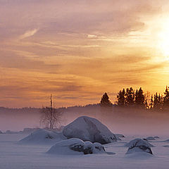 "photo ""Winter Scenery"""