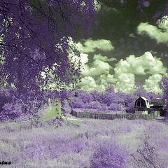 """album """"Infrared landscapes"""""""