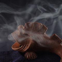 "фото ""курящая рыба"""