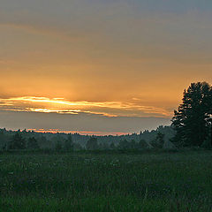 "photo ""Evening meadow"""