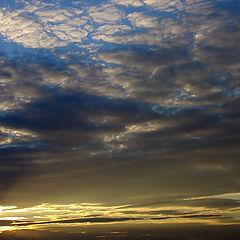 "album ""Sky"""