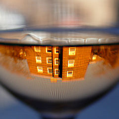 "photo ""Life on the Bottom of the Glass"""