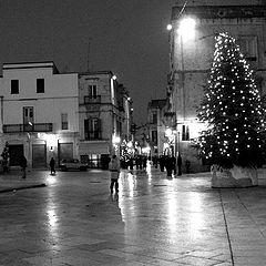 "photo ""Silent night.jpg"""