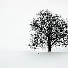 """фотоальбом """"People & Nature"""""""
