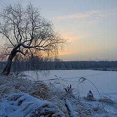 "фото ""December dawning"""