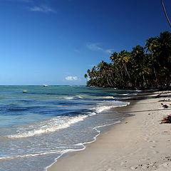 "photo ""Tamandare Beach (Permanbuco Brasil)"""