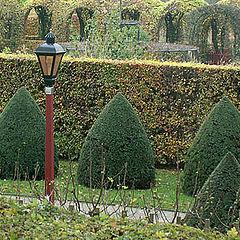 "фото ""Muiderslot, Netherlands"""