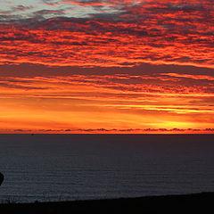 "photo ""Watching Sunset"""