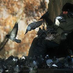 """фото """"Хранитель птичьих тайн"""""""