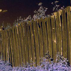 """фото """"Забор в инфракрасном исполнении"""""""