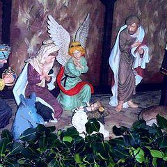 """фото """""""" Nativity """""""""""