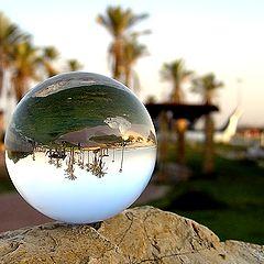 "фото ""Beach-ball"""