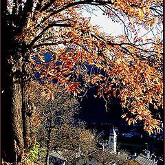 "фото ""landscape autumn"""