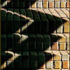 "photo ""Light and Shadows"""
