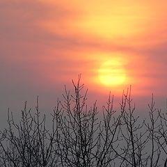"photo ""Chasing the sun"""