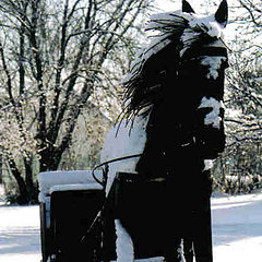 "photo ""Iron Horse"""