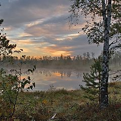 "photo ""Sunrise foggy swamp picture"""