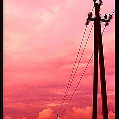 "photo ""Blood flows on wires... In a decline"""