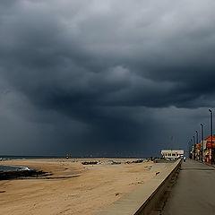 "photo ""Facing the storm"""