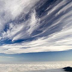 """photo """"Almost stratosphere"""""""