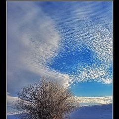 """photo """"Snow in sky"""""""