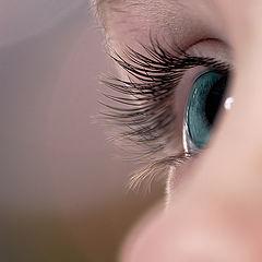 "фото ""sight"""