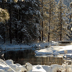 "photo ""Winter Creek"""