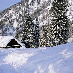 "photo ""Snows, snows"""
