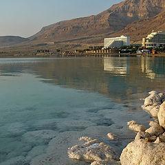 """photo """"Dead Sea 11"""""""